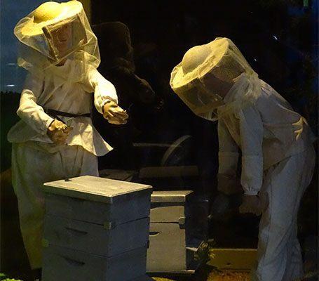 visite guidées la grange aux abeilles estivareilles